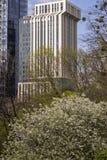 De lente binnen de stad in Stock Foto's