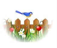 De lente blauwe vogel stock illustratie