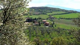 De lente Bloeiende boom in de voorgrond en het typische Toscaanse landschap stock video