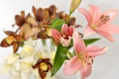 De lente bloeit boeket Stock Afbeeldingen