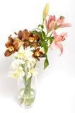 De lente bloeit boeket Royalty-vrije Stock Fotografie