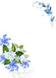 De lente bloeit frame Stock Fotografie