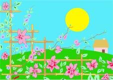 De lente bloeit illustratie Stock Foto