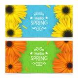 De lente bloeit samenstelling Stock Foto