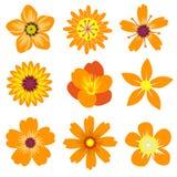 De lente bloeit Vectorillustratie Stock Foto's