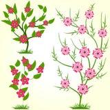 De lente bloeit Vectorillustratie Stock Fotografie