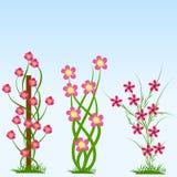 De lente bloeit Vectorillustratie Royalty-vrije Stock Foto's