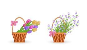 De lente bloemenboeketten in rieten die mand met verzamelde verse tulpen en blauwe wilde bloemen met groene bladeren wordt geplaa royalty-vrije illustratie