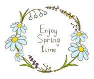 De lente bloemenkader Stock Foto