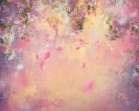 De lente Cherry Blossom Painting Stock Afbeelding