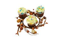 De lente cupcakes royalty-vrije stock fotografie
