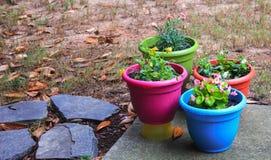 De lente in Daling Stock Foto's