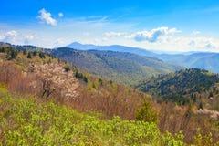 De lente in de bergen Royalty-vrije Stock Foto