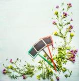 De lente of de de de zomerinstallatie en bloemen met tuin drie ondertekenen op lichte houten achtergrond, hoogste mening, kader Stock Fotografie