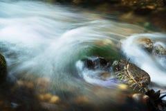 De lente/de rivier van de berg tijdens de herfst stock foto's