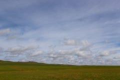 De lente in de steppen van Kazachstan stock afbeeldingen