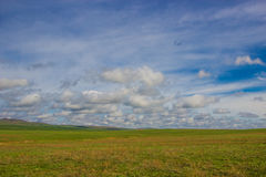 De lente in de steppen van Kazachstan Royalty-vrije Stock Fotografie