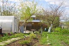 De lente in de tuin Stock Afbeelding