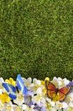 De lente of de zomergrensachtergrond Royalty-vrije Stock Afbeeldingen