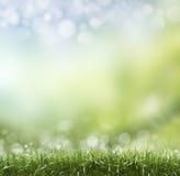 De lente of de zomerhittesamenvatting Royalty-vrije Stock Fotografie