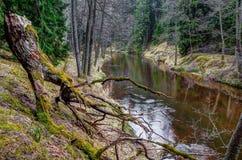 De lente dichtbij de wilde rivier van Ula royalty-vrije stock afbeeldingen