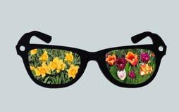 De lente door Glazen Stock Fotografie