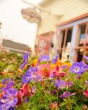 De lente door het overzees Stock Foto