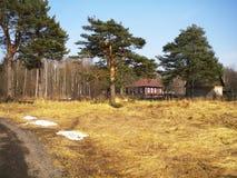 De lente duidelijke warme dag in het hout stock afbeelding
