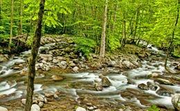 De lente en stroomversnelling in Great Smoky Mountains HDR stock foto