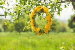 De lente en de Zomer Gele Bloemenkroon op Groene Bladeren Stock Fotografie
