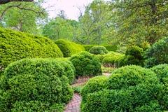 De lente, formeel tuinlandschap in park royalty-vrije stock fotografie