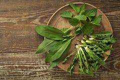 De lente gezond voedsel met wilde van de knoflookpaardebloem en netel bladeren stock afbeeldingen