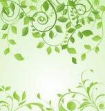 De lente groene bloemenkaart vector illustratie
