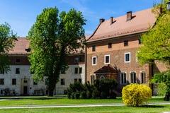De lente groene boom voor de oude bouw bij Wawel-kasteel, Crac Royalty-vrije Stock Fotografie