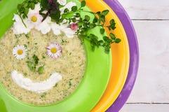 De lente groene soep met wilde kruiden, die glimlach verfraaien weinig gezicht royalty-vrije stock fotografie