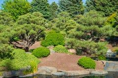 De lente Groene Tuin royalty-vrije stock fotografie