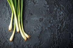 De lente groene uien Stock Foto