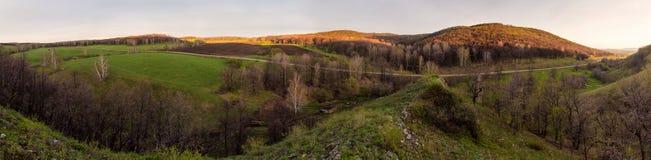 De lente in groene vallei stock foto