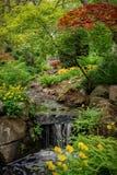 De lente in het Beacon Hill-Park Stock Foto's