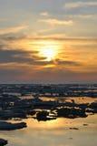 De lente het drijven van ijs Stock Foto's