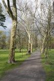 De lente in het park Royalty-vrije Stock Fotografie