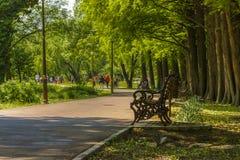 De lente in het park Royalty-vrije Stock Afbeeldingen