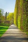 De lente in het Park Oliwski, Gdansk Stock Afbeeldingen
