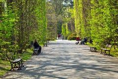 De lente in het Park Oliwski, Gdansk Royalty-vrije Stock Foto