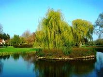 De lente in het park Wilhelminaplantsoen in Hoorn, Holland, Nederland royalty-vrije stock foto's