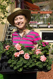 De lente het planten Royalty-vrije Stock Foto's