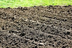 De lente het planten Keuken-tuin royalty-vrije stock afbeelding