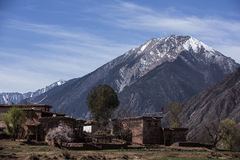 De lente in het Tibetaanse Plateau Stock Afbeelding