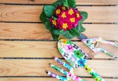 De lente het tuinieren achtergrond royalty-vrije stock afbeelding