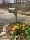 De lente het Wekken royalty-vrije stock foto's